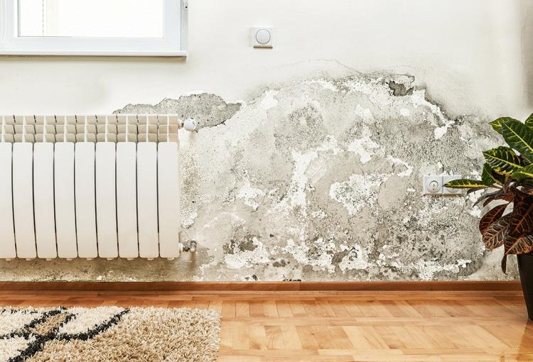 Remove cavity wall insulation