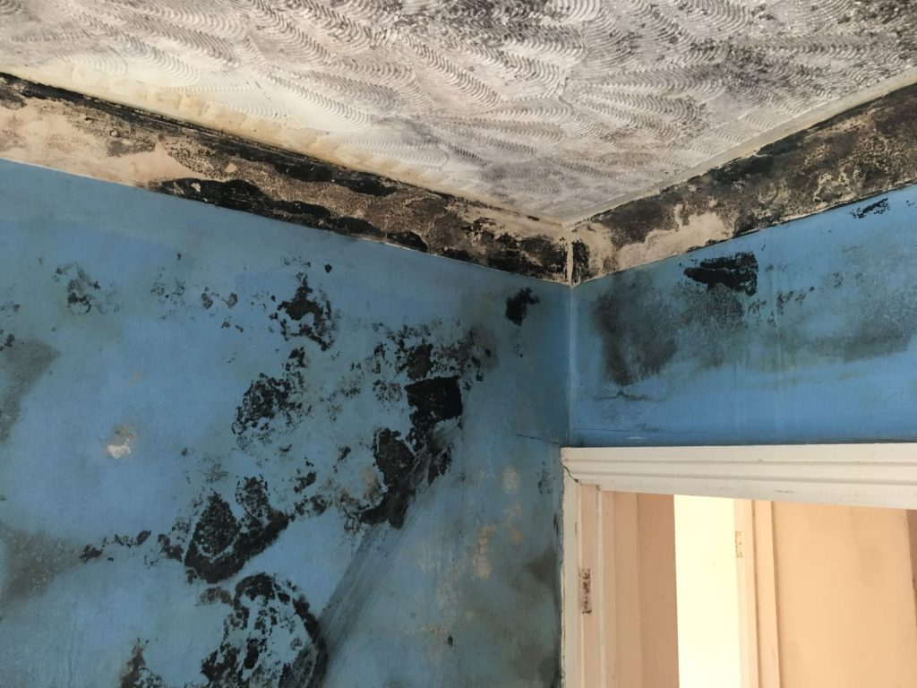 Condensation and Damp problem caused by faulty cavity wall insulation